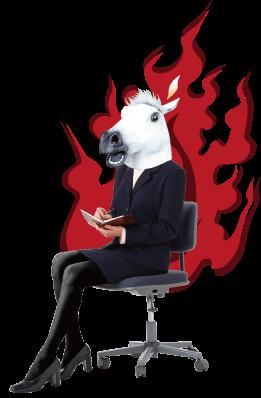 都井岬の馬先生