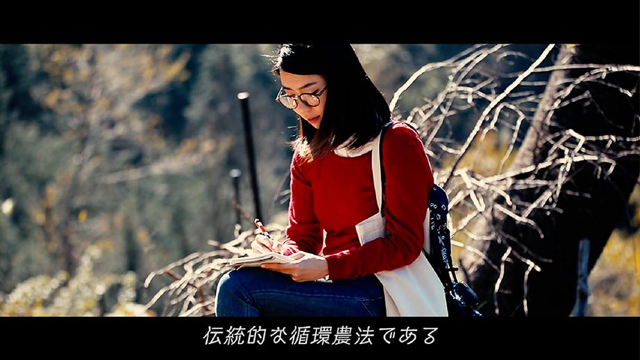椎葉村動画 中国語